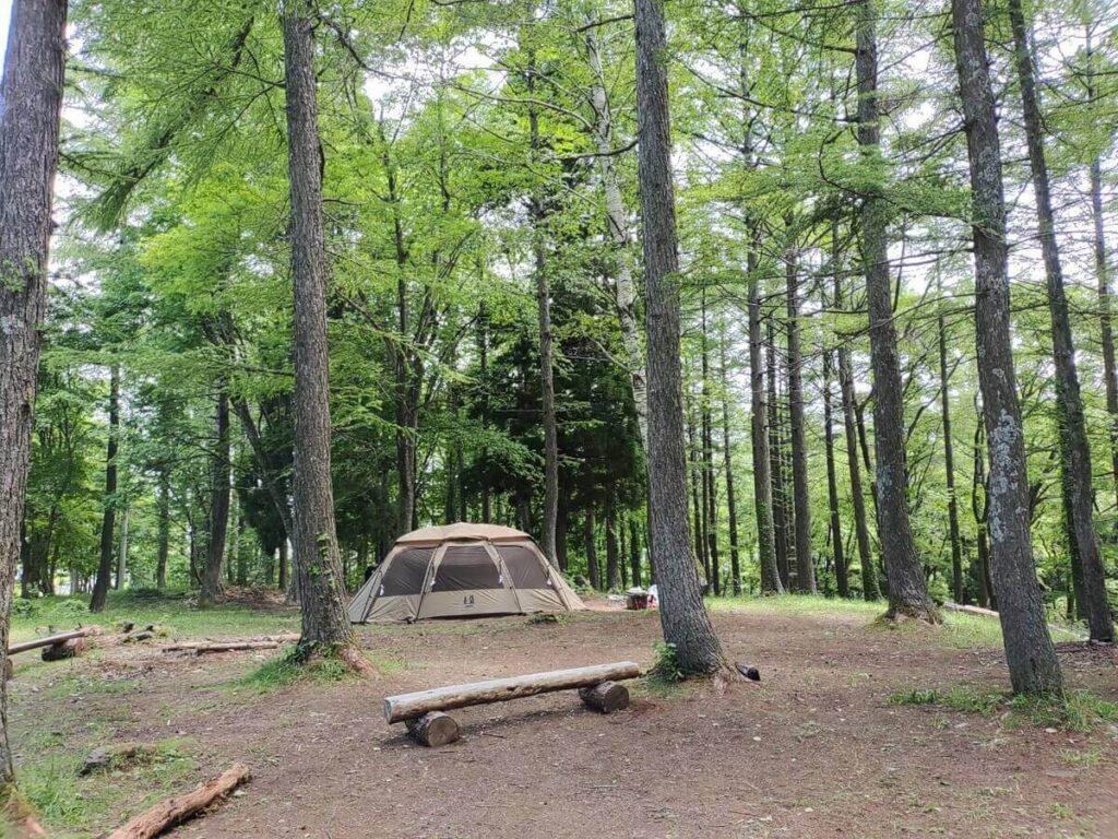 森にたたずむテント